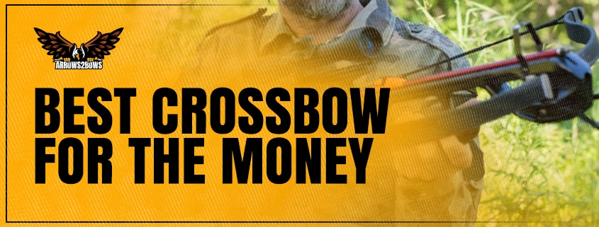 Best Crossbow for the Money