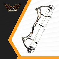 Bear Domain Compound Bow