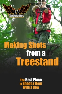 The Key to Making Shots from a Treestand