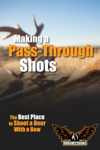 Making a Pass-Through Shot