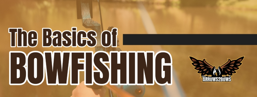 The Basics of Bowfishing